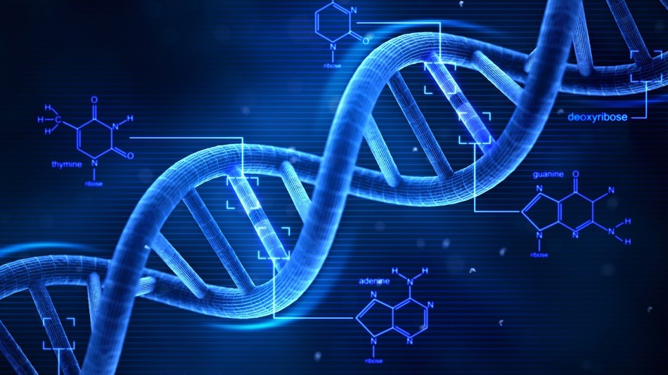 "A Note to Current and Future Clients on Goodnight Consulting's ""DNA"" 